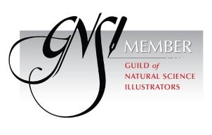 gnsi_member_badge_black-1